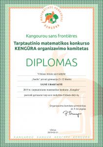 2019_vilniaus_m_sav_saules_privati_gimnazija_512_klases_ugne_ubartaite_diplomas_geriausieji_mokykloje